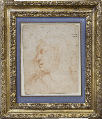 Study of a female head seen in profile, wearing a pearl earring